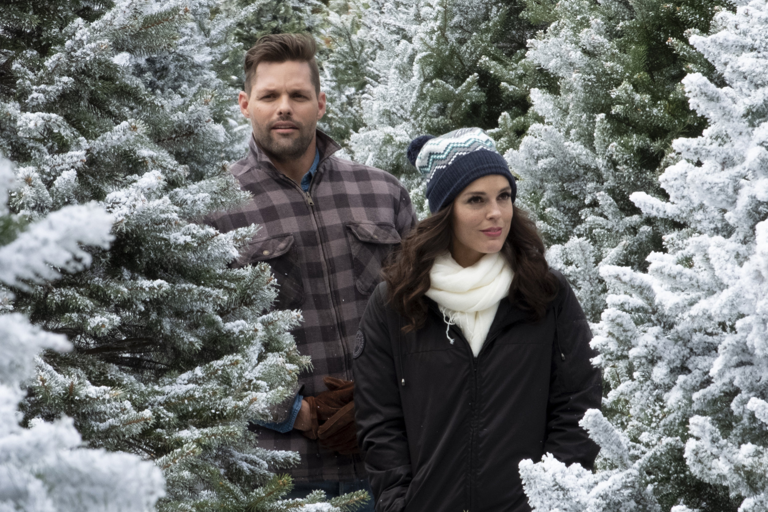 Cast Of Last Christmas In Vermont 2020 Erin Cahill as Megan on Last Vermont Christmas