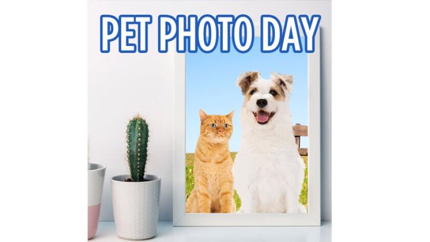 071120-pet-photo-day.jpg
