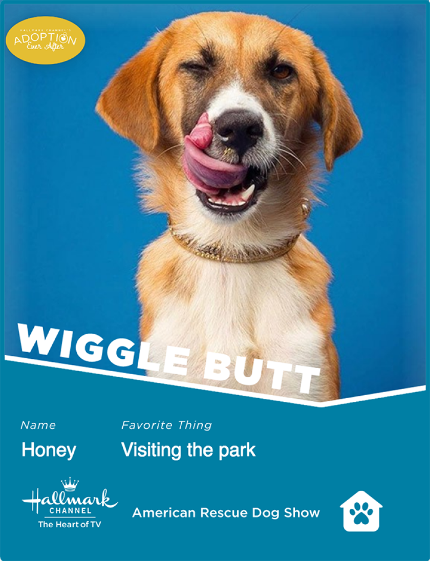 Honey-wigglebutt.png
