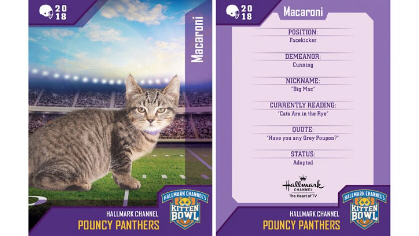 macaroni-pouncy-panthers-card.jpg