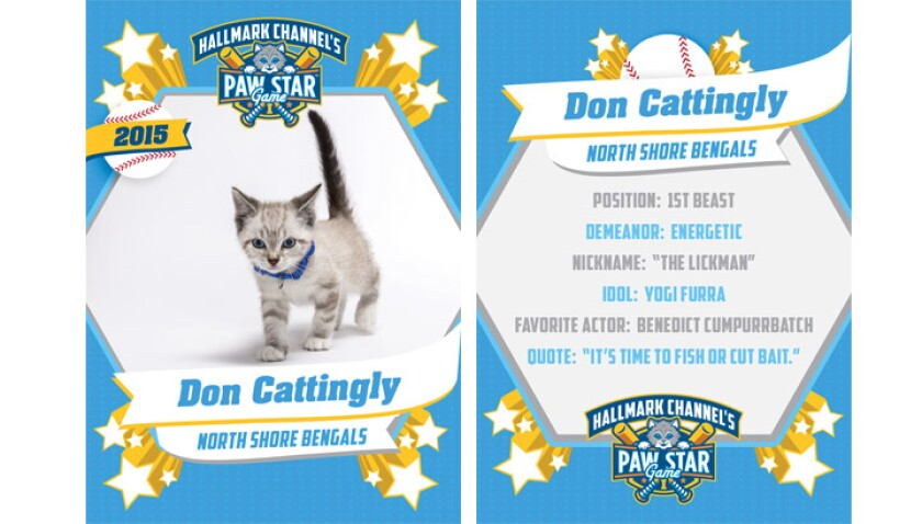 paw-star-don-cattingly-2015