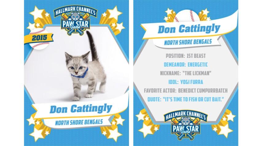 Don Cattingly - 2015