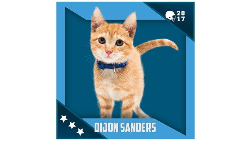 Kitten Bowl IV Emojis - North Shore Bengals - Dijon Sanders