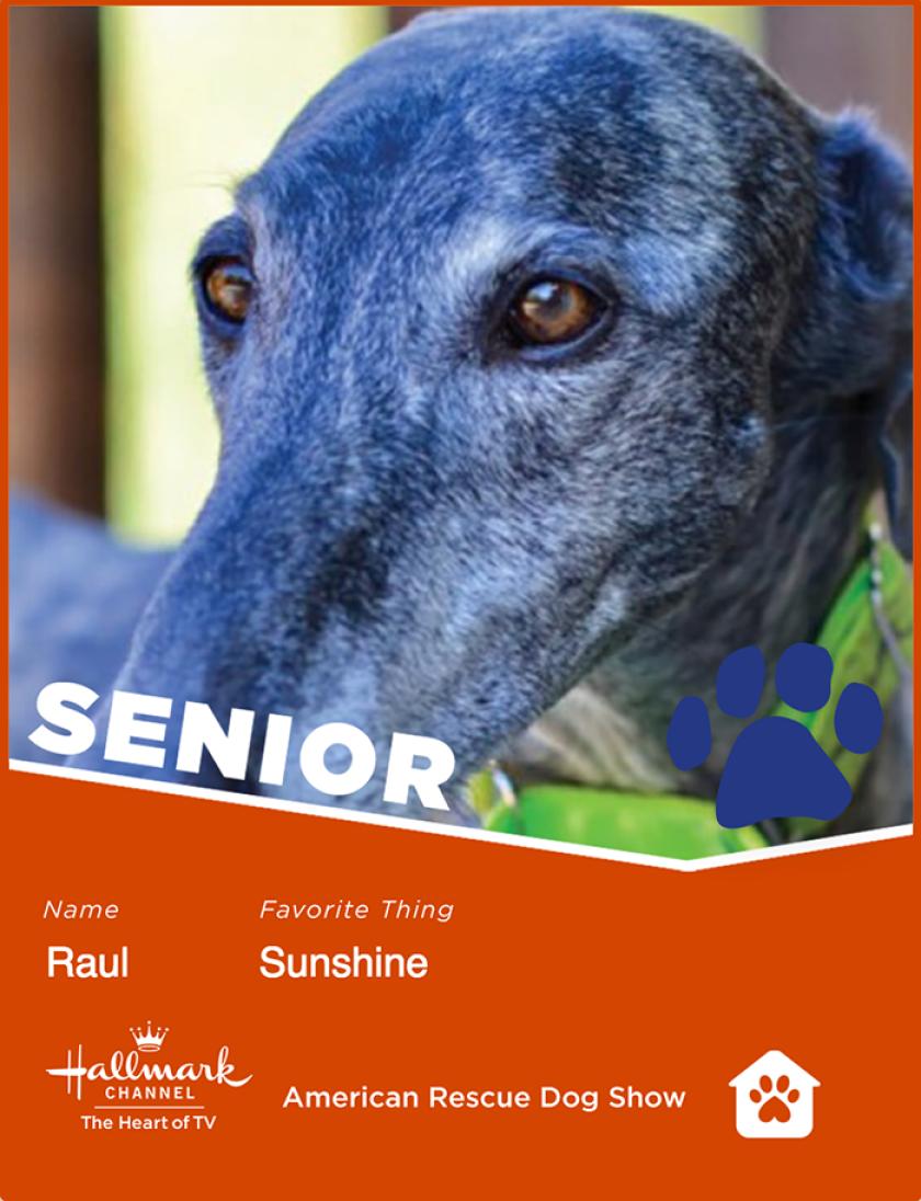 Raul-senior.png