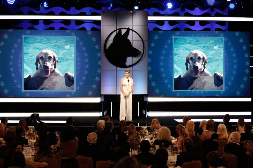 2018HeroDogAwards-Ceremony_0105.jpg