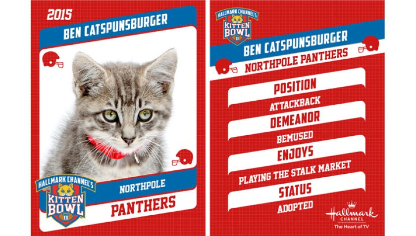 ben-catspunburger-profile