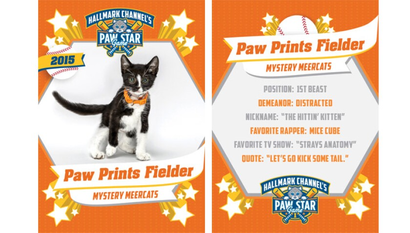 paw-star-paw-prints-fielder-2015