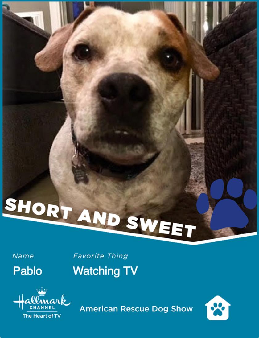 Pablo-ShortSweet.png