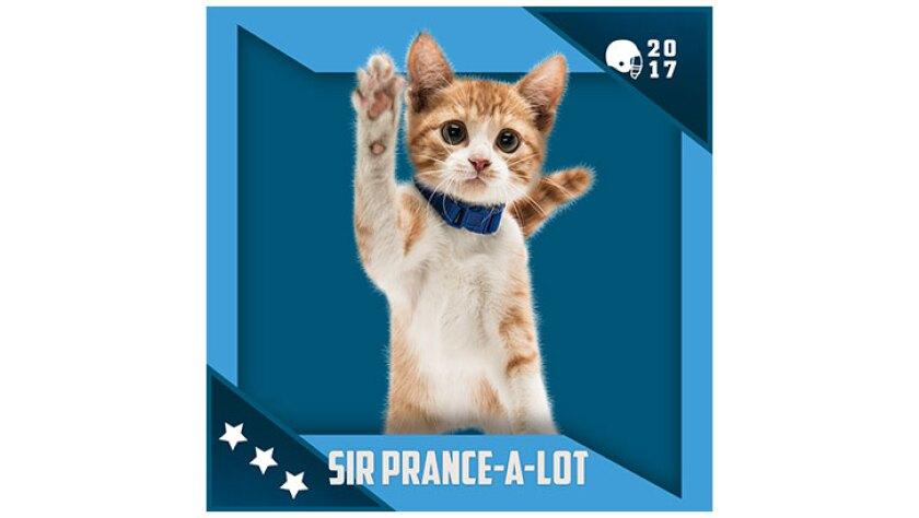 Kitten Bowl IV Emojis - North Shore Bengals - Sir-Prance-A-Lot