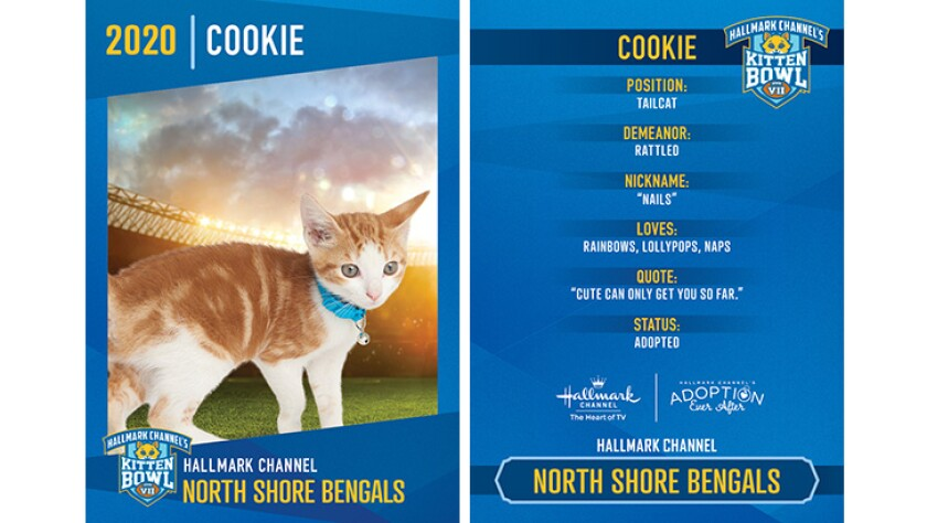 North Shore Bengals - Cookie - Player Profiles 2020