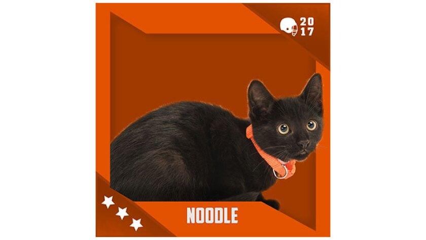 Kitten Bowl IV Emojis - Home & Family Felines - Noodle