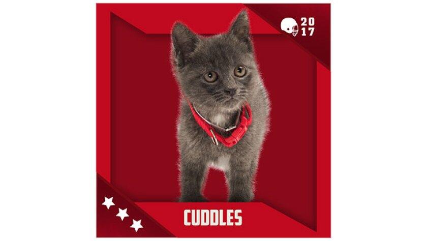 Kitten Bowl IV Emojis - Boomer's Bobcats - Cuddles