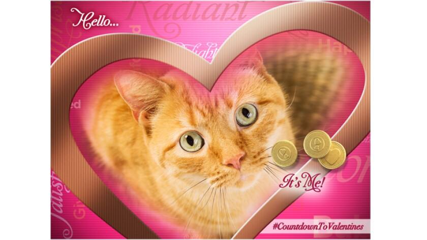 hello-happy-Valentine-726x410.jpg