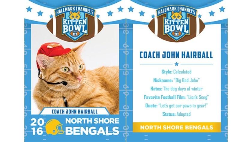 CoachJohnHairball-bengals-KBIII.jpg