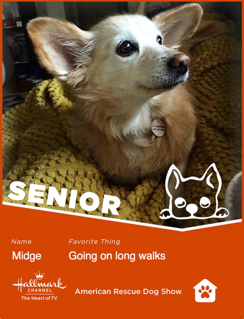 Midge-senior.png