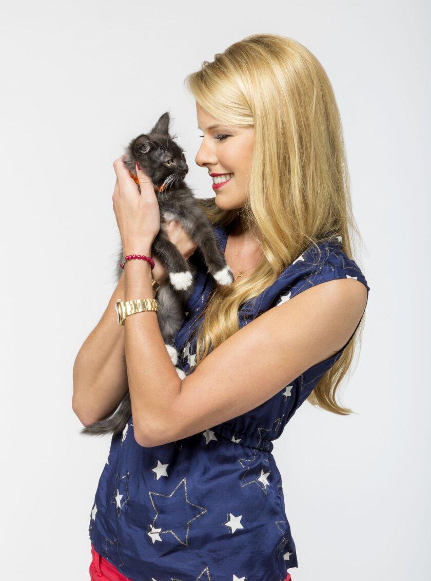 KittenPawStarGame1515