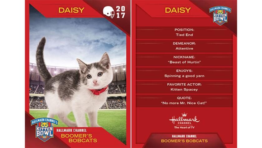 P4-Daisy-KBIV4_TrdingCrds_.jpg