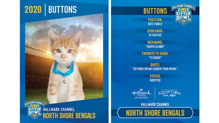 NSB-Buttons.jpg