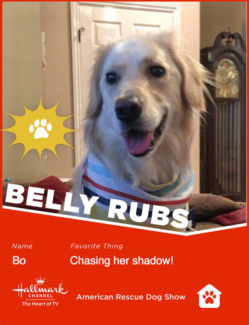 Bo-bellyrubs.png