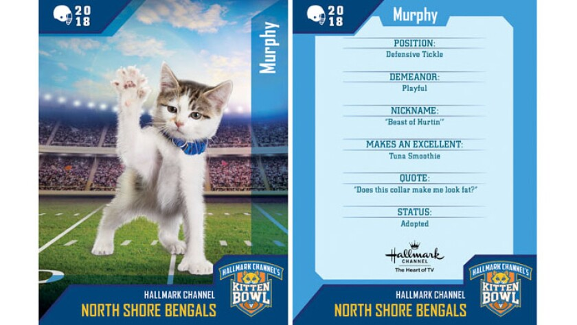 murphy-north-shore-bengals-card.jpg