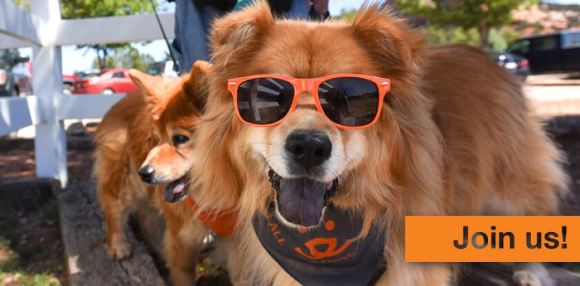 Best-Friends-Join-Us-microsite-image.jpg