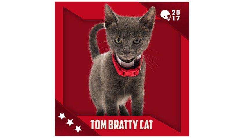 Kitten Bowl IV Emojis - Boomer's Bobcats - Tom Bratty Cat