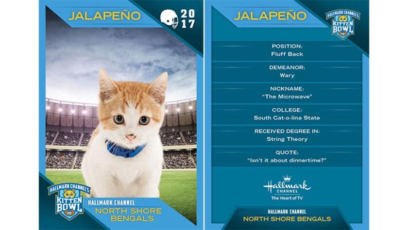 P2-Jalapeno-KBIV4_TrdingCrds_.jpg