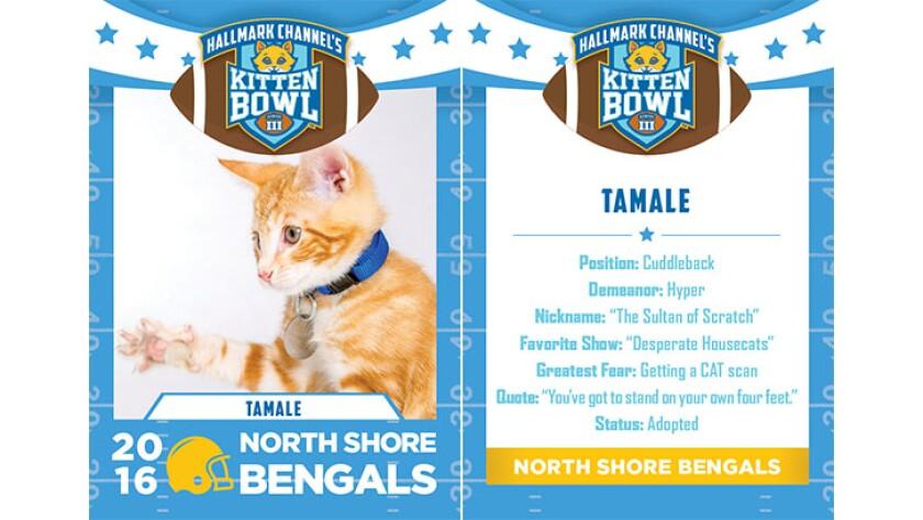 Tamale-bengals-KBIII.jpg
