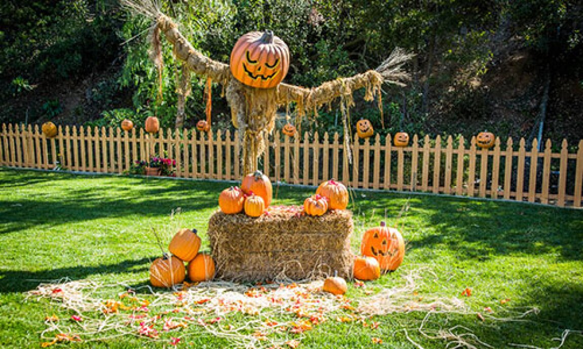 hf-ep2024-product-last-minute-halloween-decorations.jpg