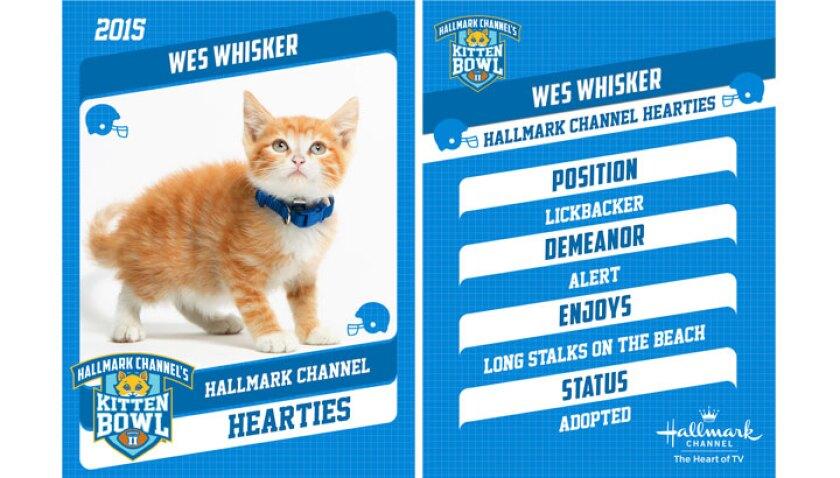 Wes Whisker - 2015