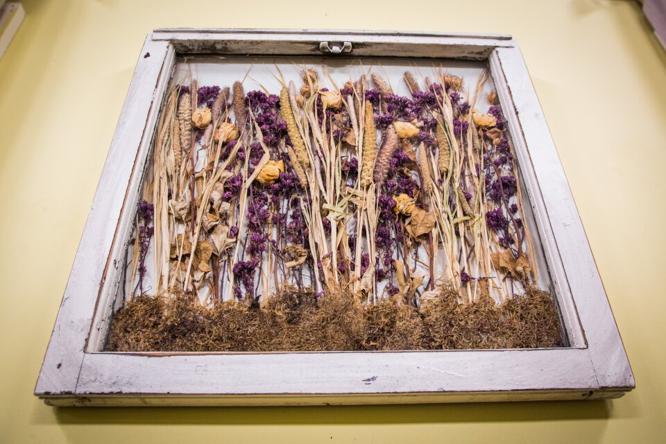 Drying and Preserving Flowers with Silica Gel