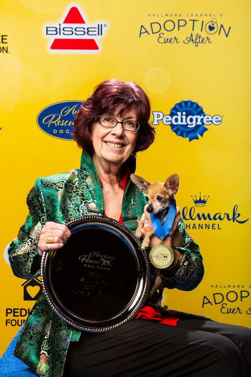 2019 American Rescue Dog Show Winners