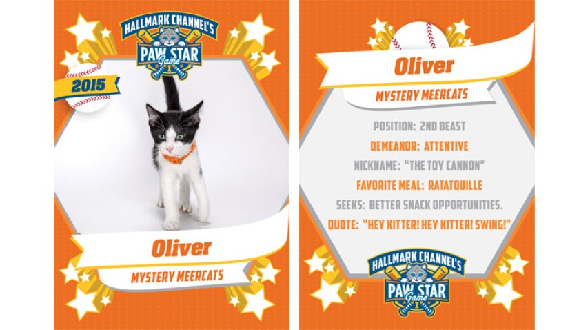 paw-star-oliver-2015