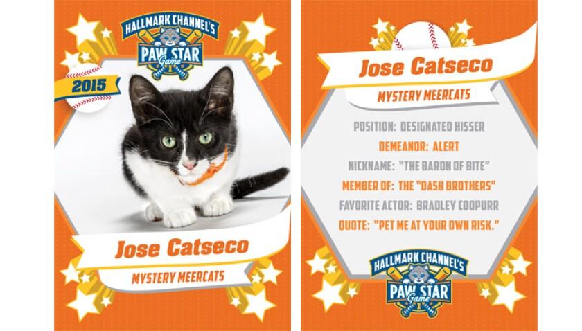 paw-star-jose-catseco-2015