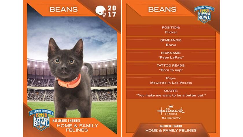 P3-Beans-KBIV4_TrdingCrds_.jpg