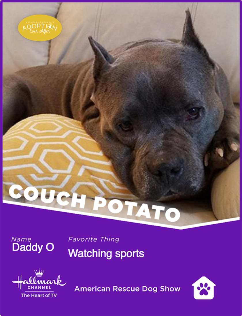 DaddyO-couchpotato.png