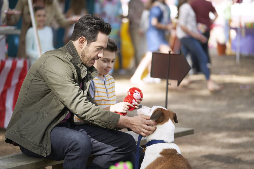 Photos from Love to the Rescue - 16