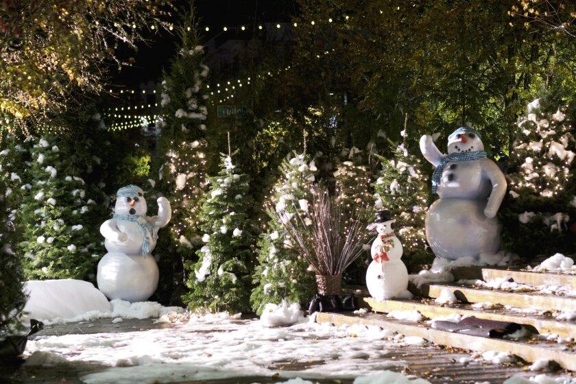 ChristmasatDollywood_0198_CB_RV1.jpg