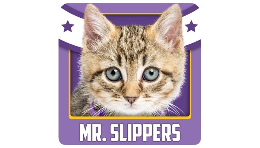Emojis-KBIII-Bobcats-Mr.Slippers.jpg