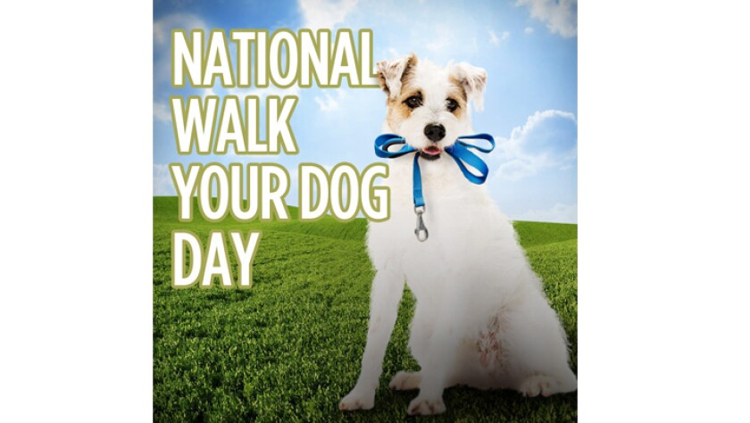 022219-national-walk-your-dog-day.jpg