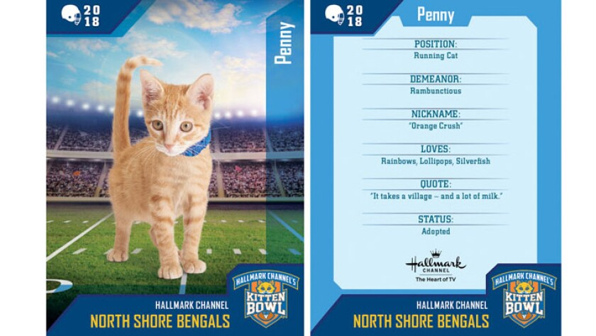 penny-north-shore-bengals-card.jpg