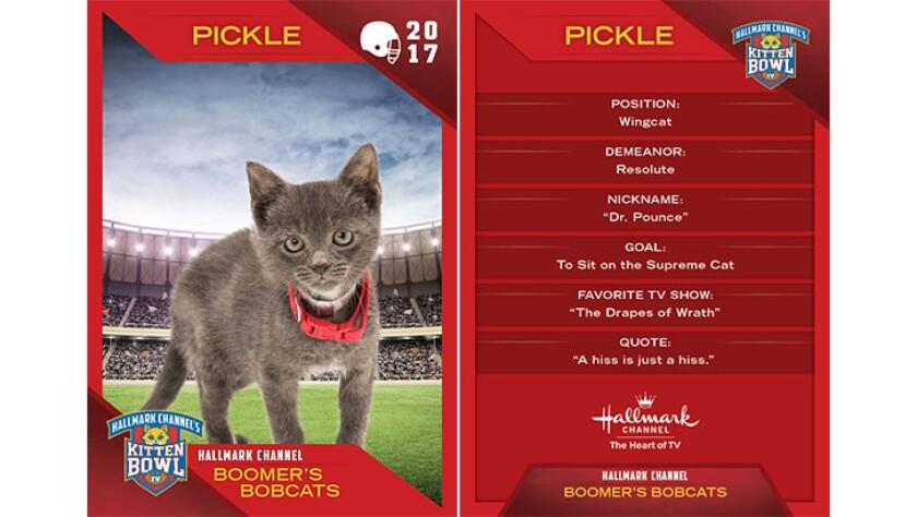 P4-Pickle-KBIV4_TrdingCrds_.jpg