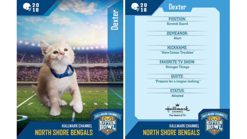 dexter-north-shore-bengals-card.jpg