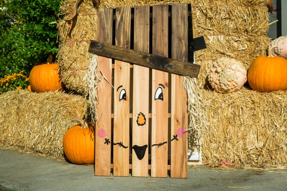 hf6028-product-scarecrow.jpg