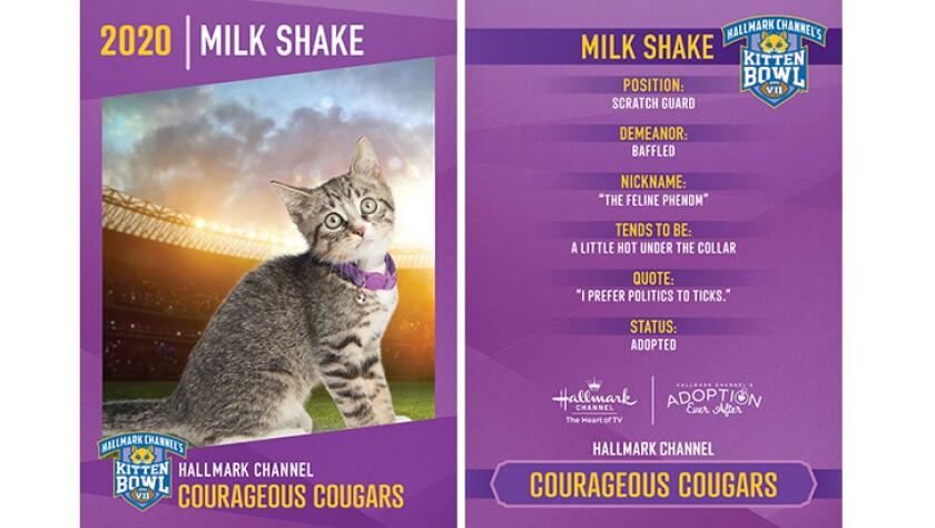 CC-Milk-Shake.jpg