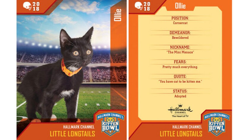 ollie-little-longtails-card.jpg
