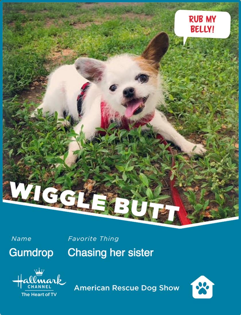 Gumdrop-wigglebutt.png