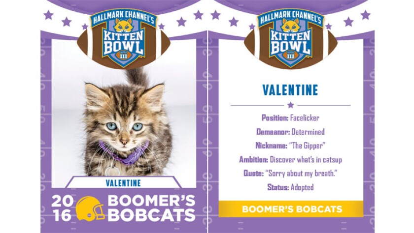 Valentine-bobcats-KBIII.jpg