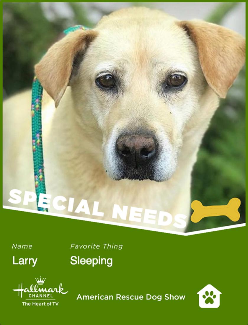 Larry-specialneeds.png