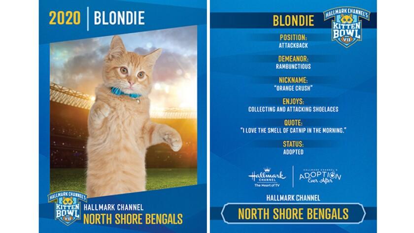 NSB-Blondie.jpg